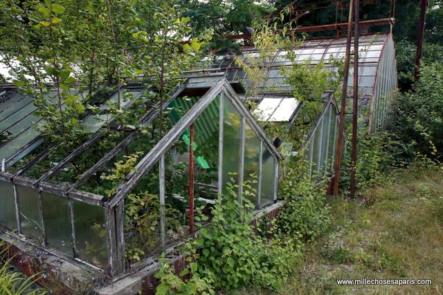 047 explorer les vestiges du jardin tropical de vincennes. Black Bedroom Furniture Sets. Home Design Ideas